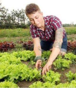 beat-greens-garden-1