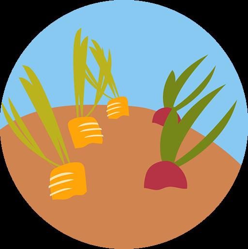 Plant-a-Row Donate-a-Row Gardens
